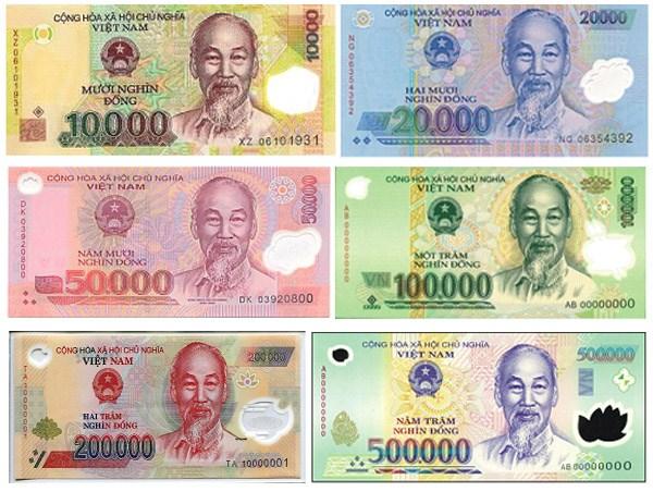 越盾是亚洲最稳定的货币之一 hinh anh 1
