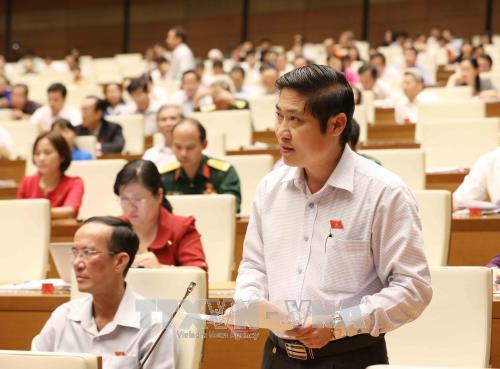 越南第十四届国会第四次会议公报(第八号) hinh anh 1
