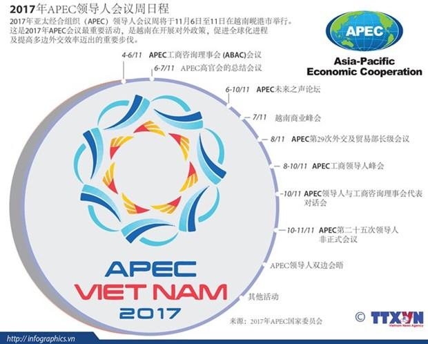 2017年APEC会议:将挑战变成机遇 hinh anh 1