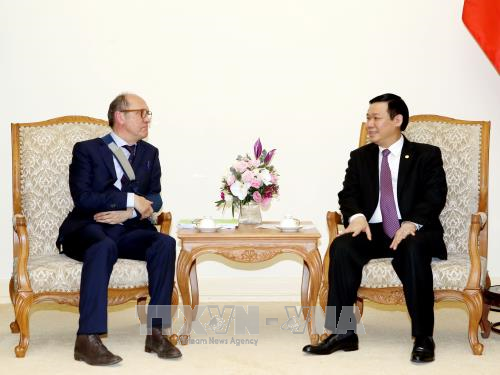 王廷惠副总理:为赴越投资的比利时企业提供支持 hinh anh 2