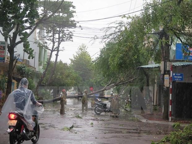第十二号台风登陆越南为中南部地区造成巨大人员和财产损失 hinh anh 1
