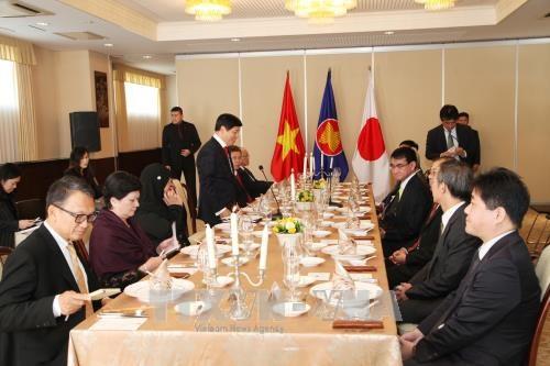 2017年APEC会议:日本外务大臣同东盟各国大使就APEC展开讨论 hinh anh 1