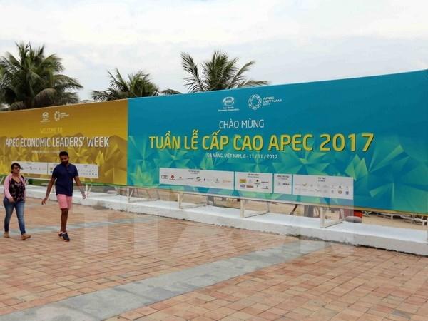 2017年APEC领导人会议周前夕:国际代表和记者高度评价越南的准备工作 hinh anh 1