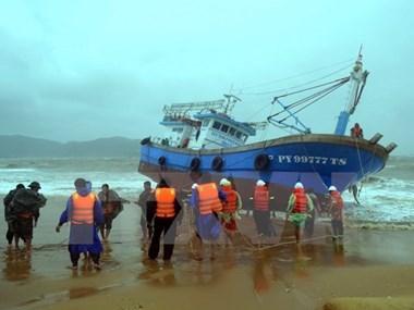 越南政府总理指导开展台风灾后重建和洪涝灾害救灾应急工作 hinh anh 1