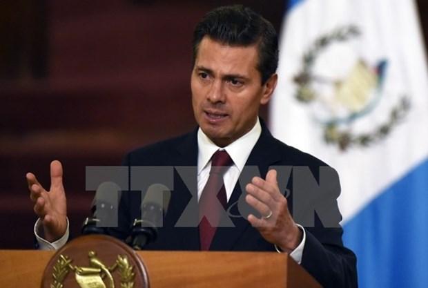 墨西哥总统涅托:越南与墨西哥加强太平洋地区的互联互动 hinh anh 1