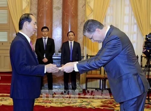 国家主席陈大光接受三国新任驻越大使递交的国书 hinh anh 3