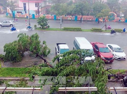 越南政府总理指导开展台风灾后重建和洪涝灾害救灾应急工作 hinh anh 2