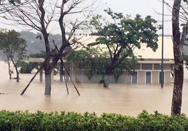 """越南红十字会为遭受强台风""""达维""""影响的省份提供紧急救助 hinh anh 2"""