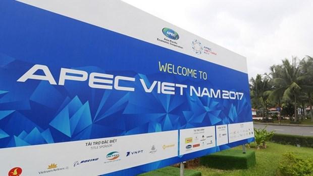 2017年APEC会议:肯定越南的新视野和地位 hinh anh 1