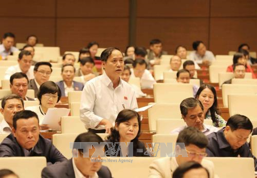 越南第十四届国会第四次会议公报(第十一号) hinh anh 1