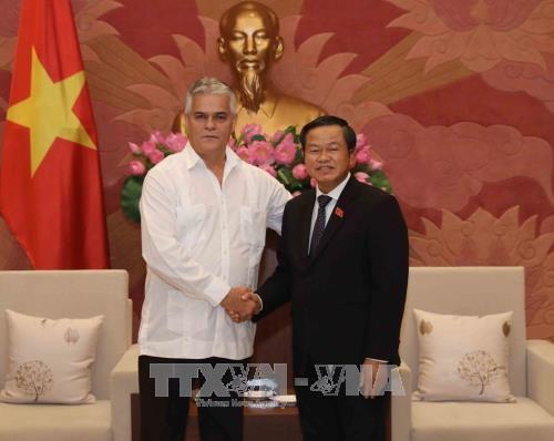 越共中央民运部部长张氏梅会见古巴保护革命委员会代表团 hinh anh 2