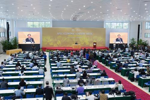 APEC 2017:亚太需要加强合作实现茂物目标 hinh anh 1