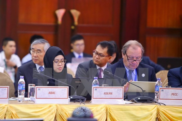 引导全球贸易自由化趋势的2017年APEC领导人会议 hinh anh 1