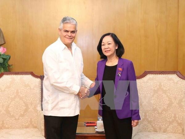 越共中央民运部部长张氏梅会见古巴保护革命委员会代表团 hinh anh 1
