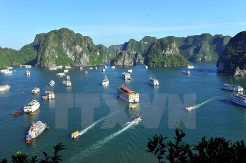 2018年国家旅游年期间将举行许多精彩活动 hinh anh 2