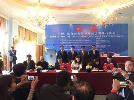 中国商务部对外贸易司副司长支陆逊:越中经贸合作潜力与空间将不断拓展 hinh anh 1