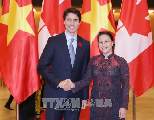 越共中央总书记阮富仲与国会主席阮氏金银分别会见加拿大总理特鲁多 hinh anh 2
