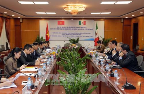 越南与墨西哥合作潜力仍巨大 hinh anh 1