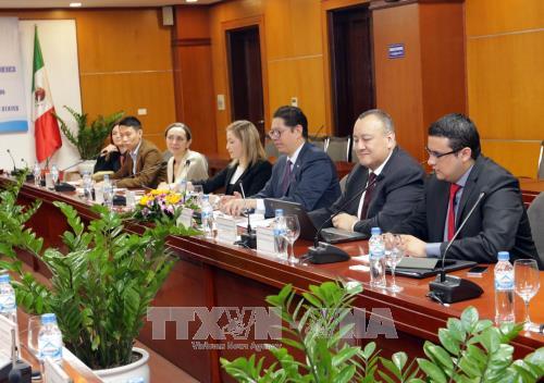 越南与墨西哥合作潜力仍巨大 hinh anh 2