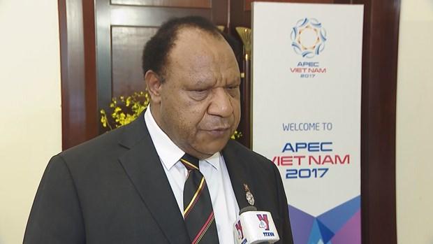 2017年APEC会议:巴布亚新几内亚希望学习借鉴越南举办APEC会议的经验 hinh anh 1