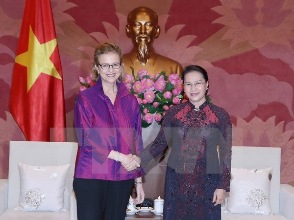国会主席阮氏金银会见联合国开发计划署驻越南首席代表维森 hinh anh 1