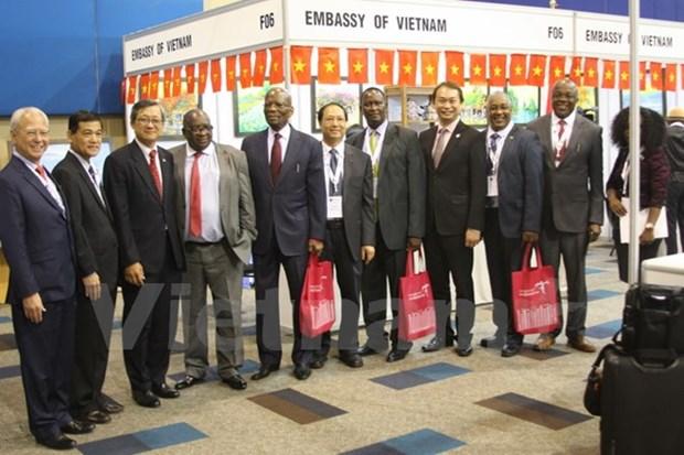 首届东盟-非洲贸易博览会在南非举行 hinh anh 1
