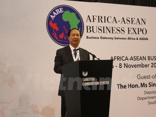 首届东盟-非洲贸易博览会在南非举行 hinh anh 2