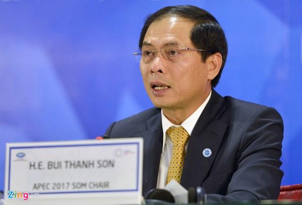 2017 年APEC 会议:实现包容性发展 决不让任何人掉队 hinh anh 1