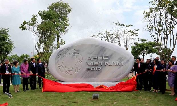 2017年APEC会议:代表们在APEC公园参观游览 兴致勃勃 hinh anh 1