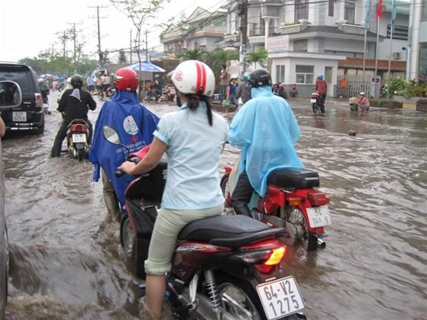胡志明市与印度企业加强防治城市内涝领域的合作 hinh anh 2
