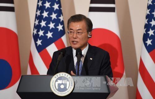 韩国总统文在寅将赴越南出席APEC领导人会议 hinh anh 1