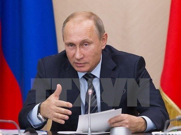 俄罗斯总统普京:俄罗斯支持亚太自由贸易区建设 hinh anh 1