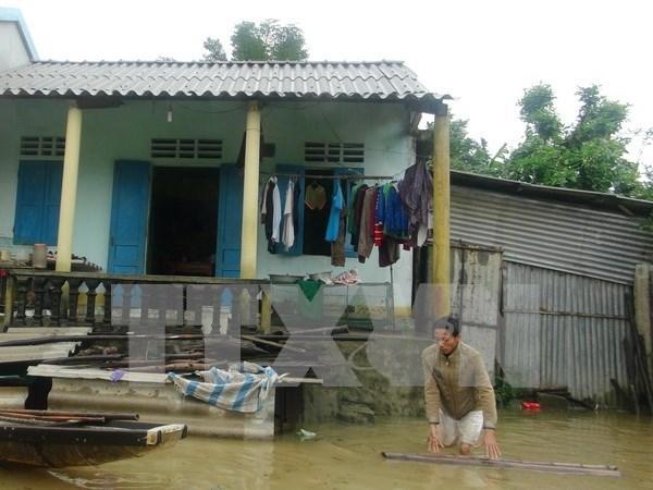 欧盟愿意帮助越南开展台风灾后恢复重建工作 hinh anh 1