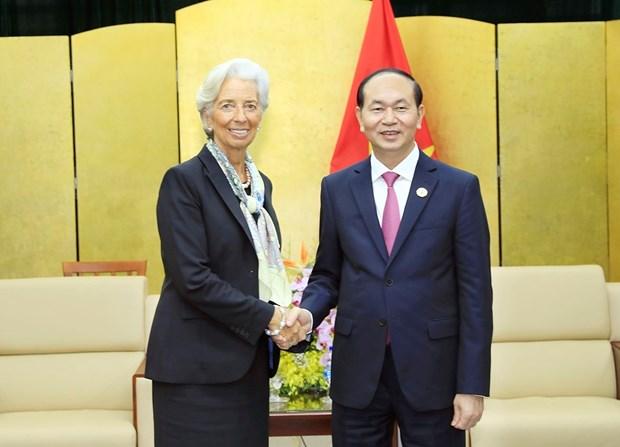 越南国家主席陈大光会见国际货币基金组织总裁克里斯蒂娜•拉加德 hinh anh 2