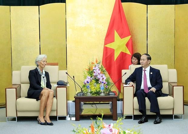 越南国家主席陈大光会见国际货币基金组织总裁克里斯蒂娜•拉加德 hinh anh 1