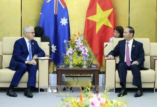 陈大光与澳大利亚总理和文莱国王举行双边会晤 hinh anh 1