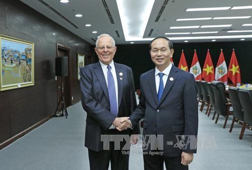 陈大光分别与秘鲁和墨西哥两国总统举行双边会晤 hinh anh 1