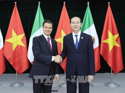 陈大光分别与秘鲁和墨西哥两国总统举行双边会晤 hinh anh 2