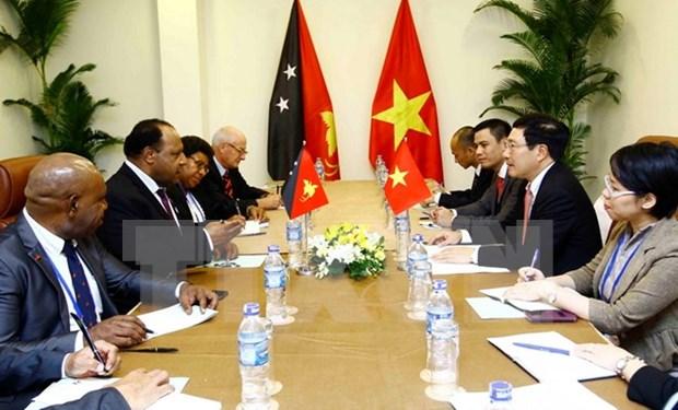 2017年APEC会议:范平明会见新西兰和巴新两国外长 hinh anh 2