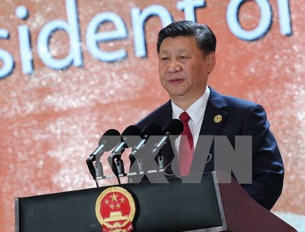 2017年APEC会议:习近平发表重要讲话 强调支持经济全球化开放、包容 hinh anh 1