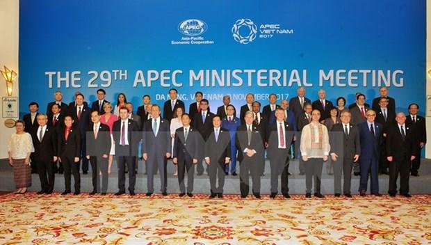 2017年APEC会议:部长级会议通过《联合声明》 hinh anh 1