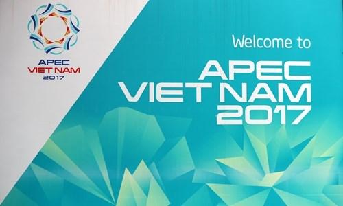 APEC第25次领导人会议今日在岘港市召开 hinh anh 1