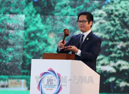 2017年亚太经合组织工商领导人峰会落下帷幕 hinh anh 1