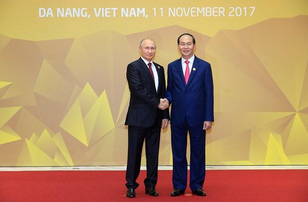 2017年APEC会议:越南的形象在国际舞台上不断得到提高 hinh anh 1