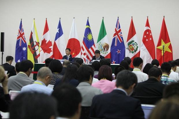 越南APEC会议:11国将TPP更名为《跨太平洋伙伴全面进展协定》 hinh anh 1