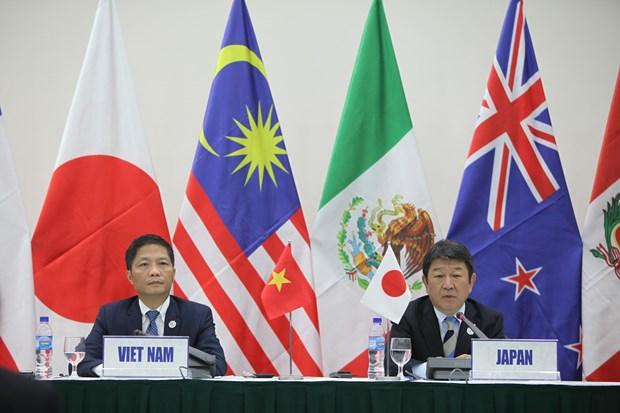 越南APEC会议:11国将TPP更名为《跨太平洋伙伴全面进展协定》 hinh anh 2