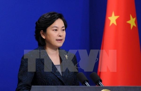 中国外交部发言人华春莹:中国将尽快向越南提供所需援助物资 hinh anh 1