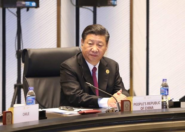 中共中央总书记、国家主席习近平对越南进行国事访问 hinh anh 3