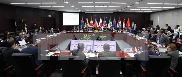 2017年APEC 会议:中方强调TPP不会影响到RCEP hinh anh 1