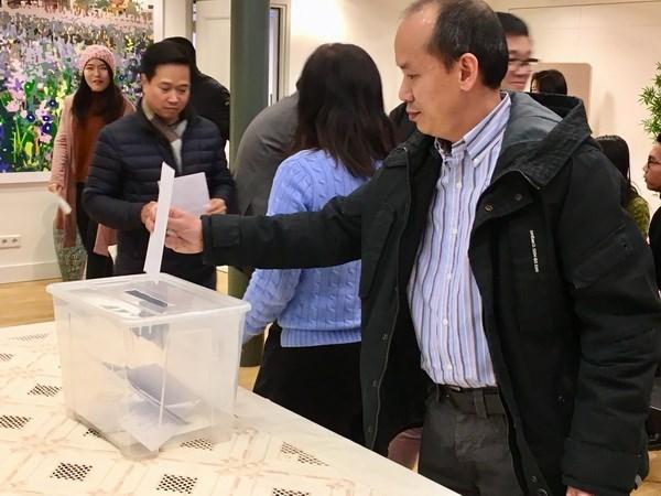 旅居荷兰越南人社群为国内灾民捐款 hinh anh 2